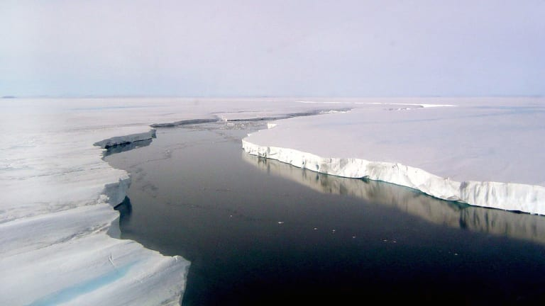 CLIMATE CHANGE: CANADIAN ICE SHELF COLLAPSES INTO THE SEA