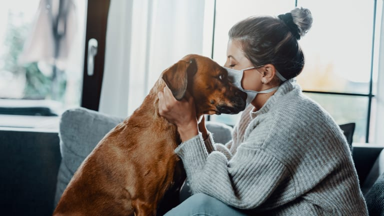 Canadian Study Shows Dogs and Cats CAN Contract COVID-19 from Humans