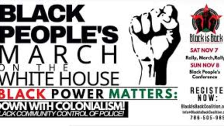 Black is Back Coalition's 19 pt. Plan for Black Self Determination - Outside The Two Party Duopoly