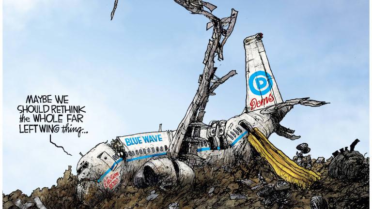 Democrat's Crash Landing 11-16-20