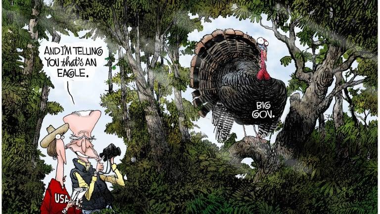 Biden's Big Turkey 11-27-20