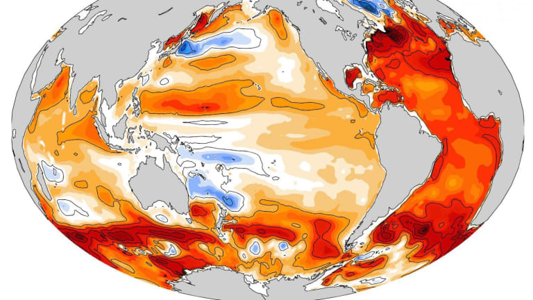 Catastrophic: The oceans are warming faster than scientists thought