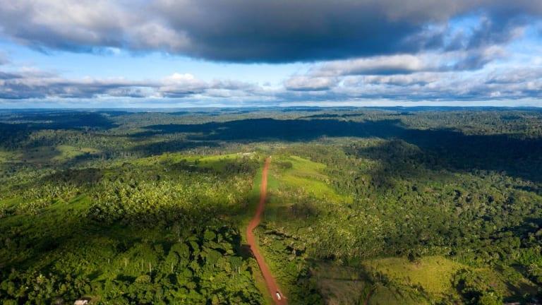 GOP LOBBYISTS HELP BRAZIL RECRUIT U.S. COMPANIES TO EXPLOIT THE AMAZON
