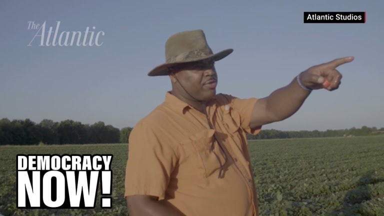 How Federal Policies Dispossessed Black Americans of Millions of Acres