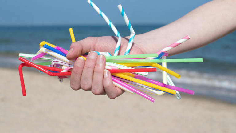 Don't Be Scapegoated For Using Plastic Straws or Old School Lightbulbs