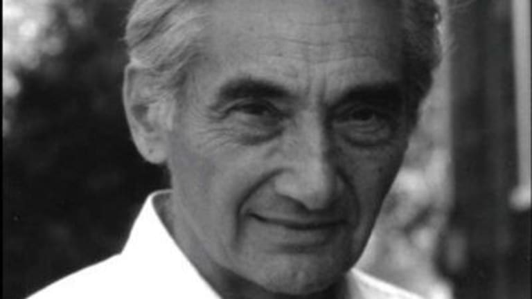 Howard Zinn: Vote but understand voting is the least of your duties as a citizen