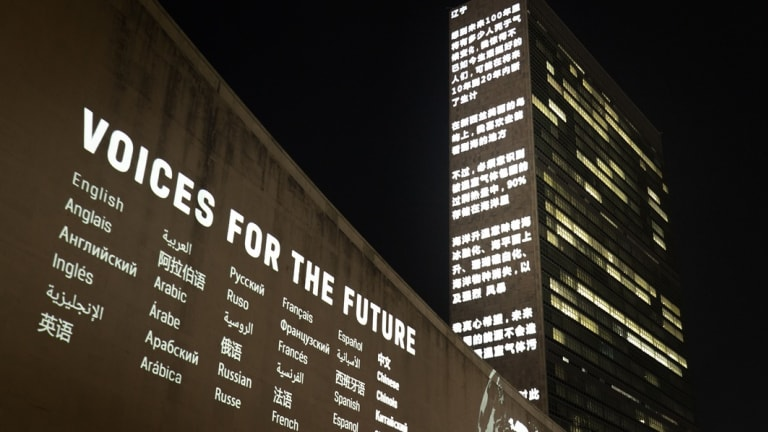 Climate Activist Art at the UN: Voices for the Future