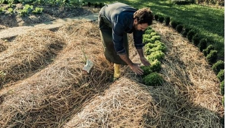 """Hampton Institute: """"There is No Straight Line to a Just Food System"""""""
