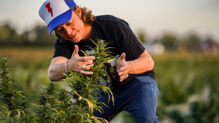 Presidential Candidate Brock Pierce Re: Marijuana