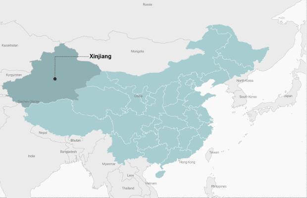 xinjiang.png from ICiJ.org